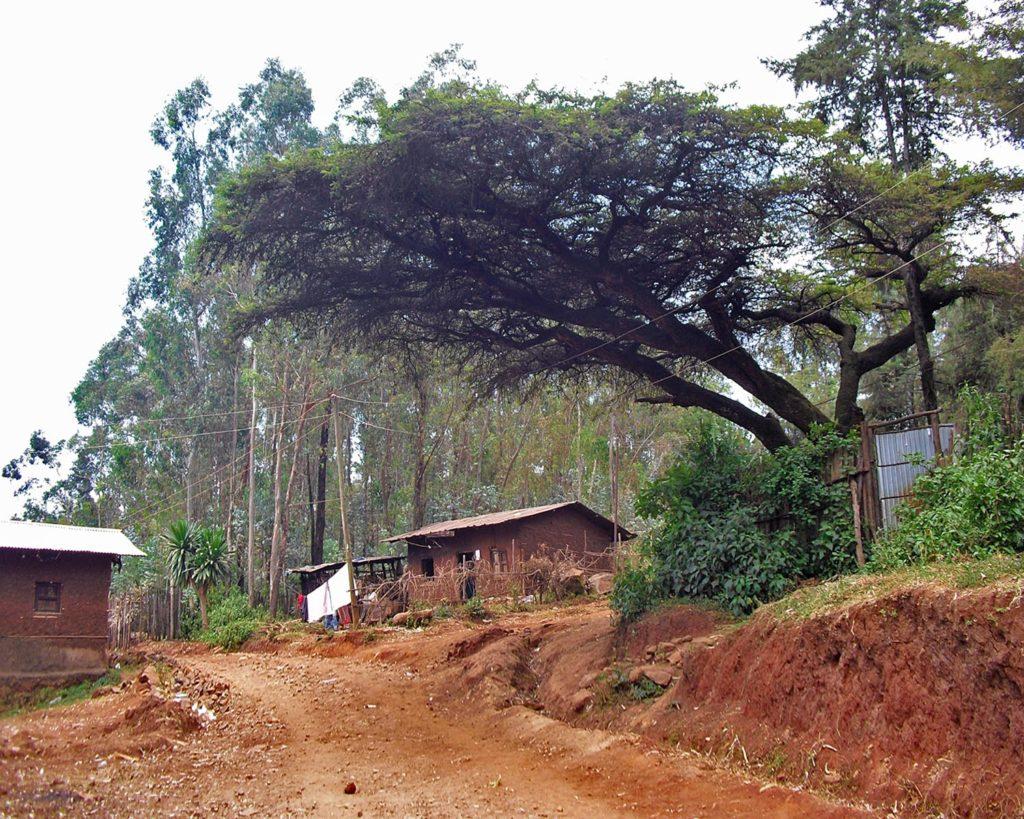paesaggi africani-terra rossa africana-Debre Markos-Etiopia-Ethiopia-Africa