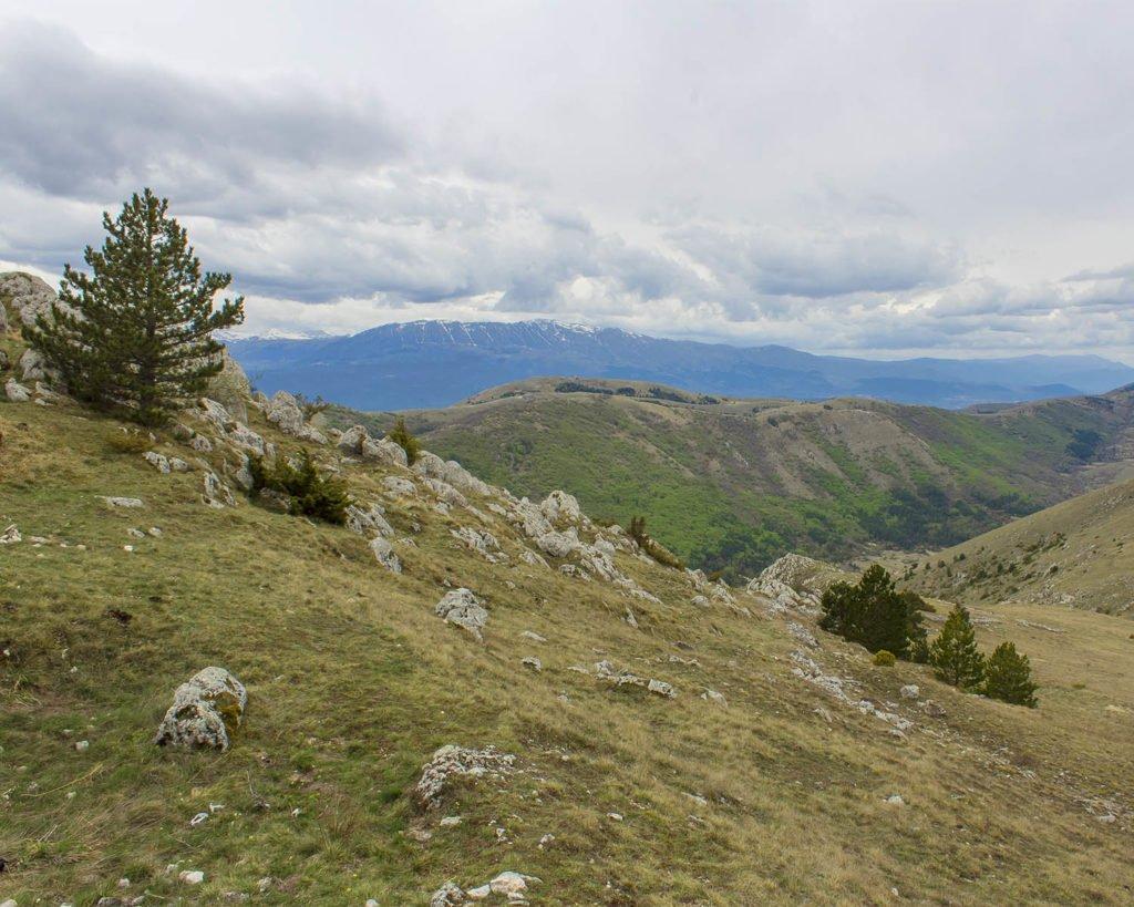 parco nazionale Gran Sasso-Monti Laga-Abruzzo-Italia